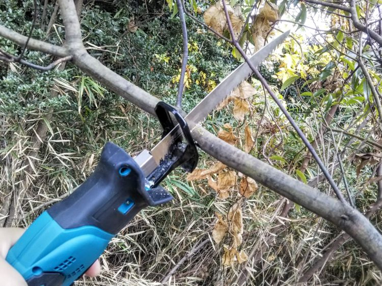 生木の切断